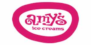 Amy's Ice Cream is proud to support Austin Arts Fair 2019