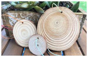 woodsie-craft-at-Austin-Arts-Fair-2019